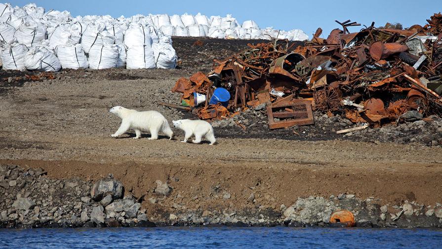 ecology_Arktika1